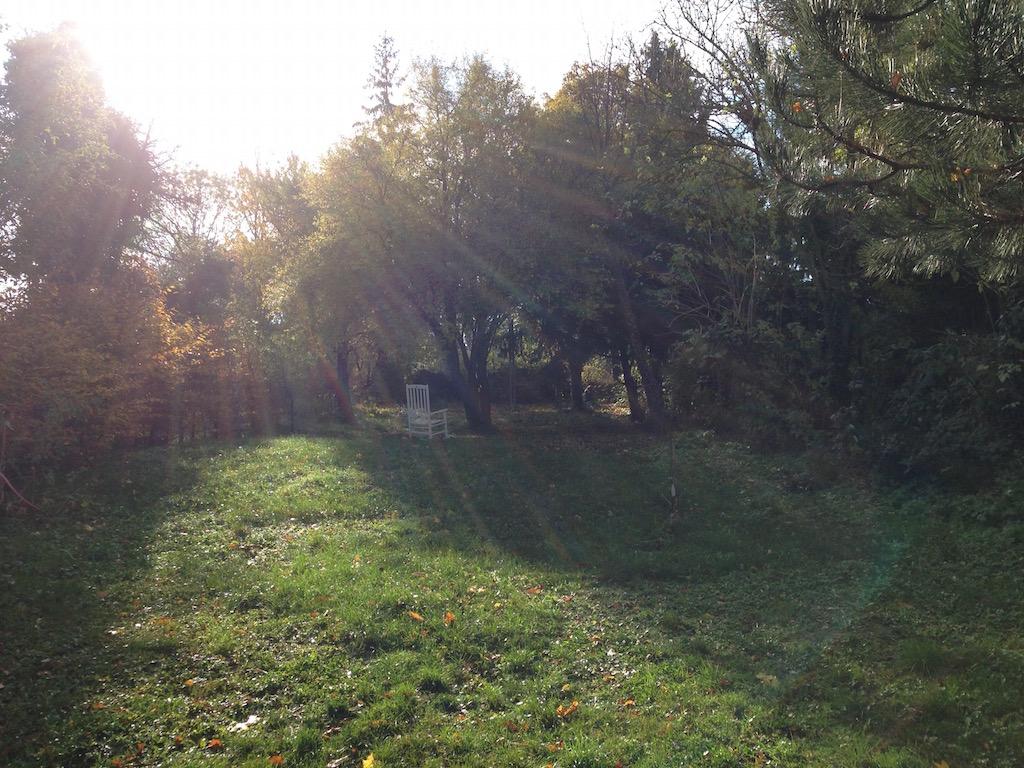 Morgenstimmung im Garten der Praxis Rundumberatung