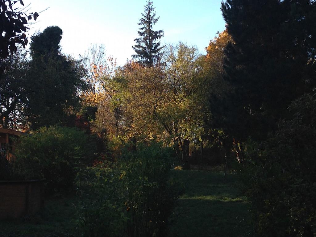 Der Garten der Praxis Rundumberatung
